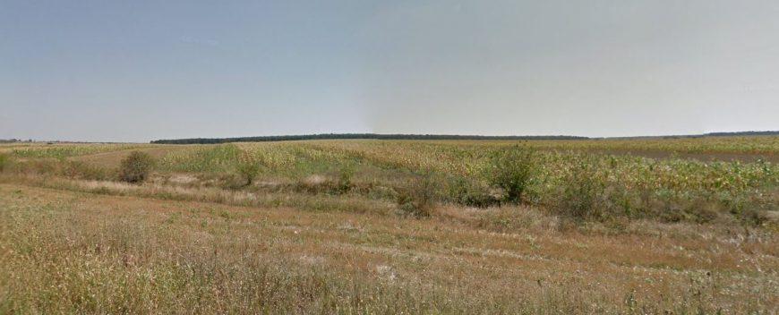 teren agricol de vanzare bilciuresti